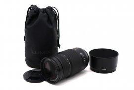 Panasonic Lumix G Vario 100-300mm f/4.0-5.6 Mega O.I.S.